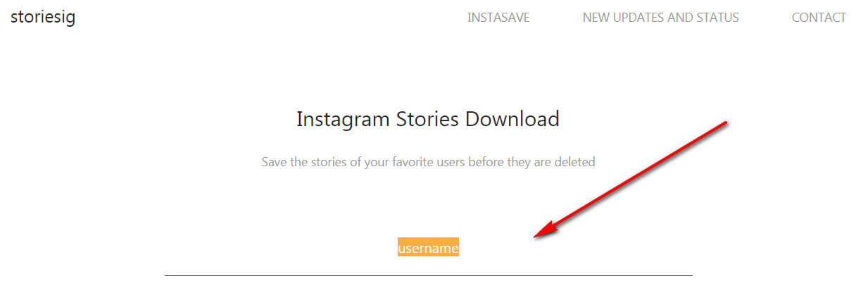 Anonymous viewing of Instagram stories online