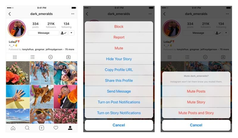 How to hide Instagram Stories or Posts from your feed