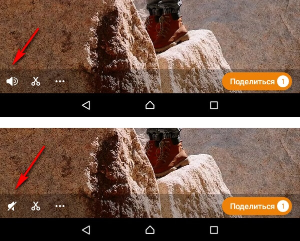 How to remove sound from video in moments