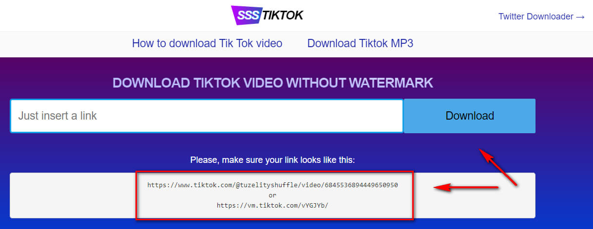 Service for downloading videos from Tik-Tok