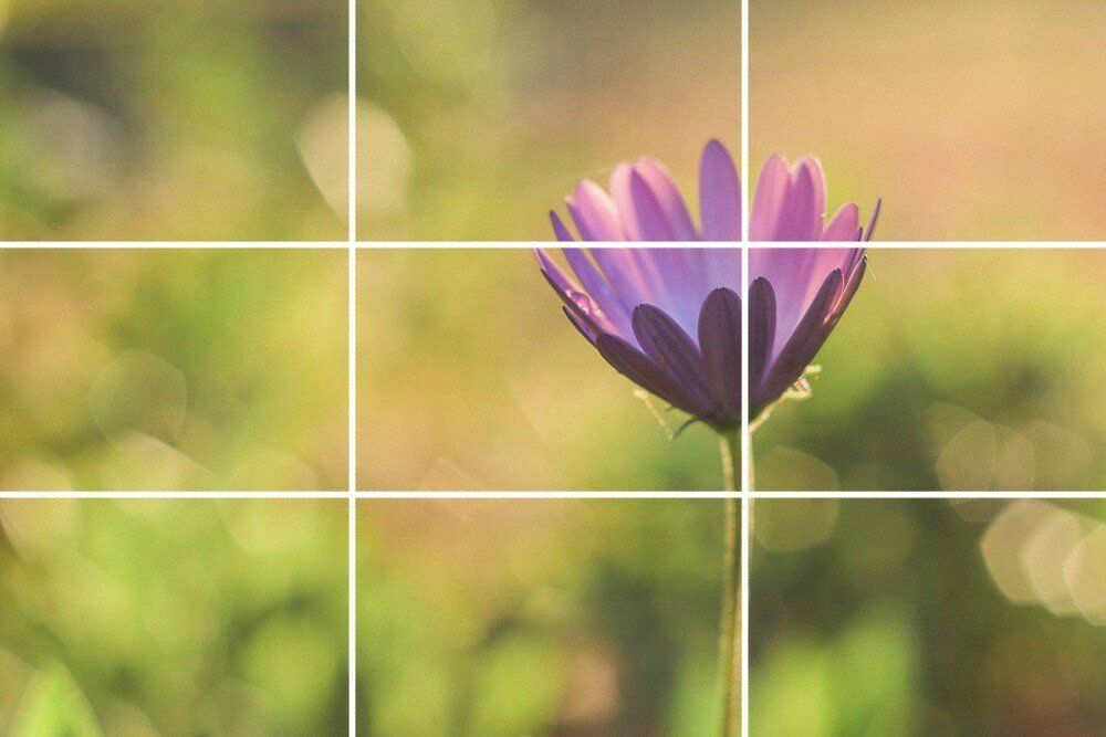 Rule of thirds.  The object is positioned along lines or at the intersection of lines
